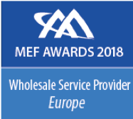 MEF2018-3