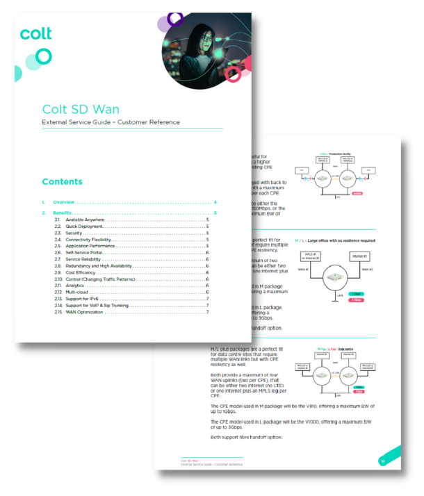 SD WAN external service guide - screenshot